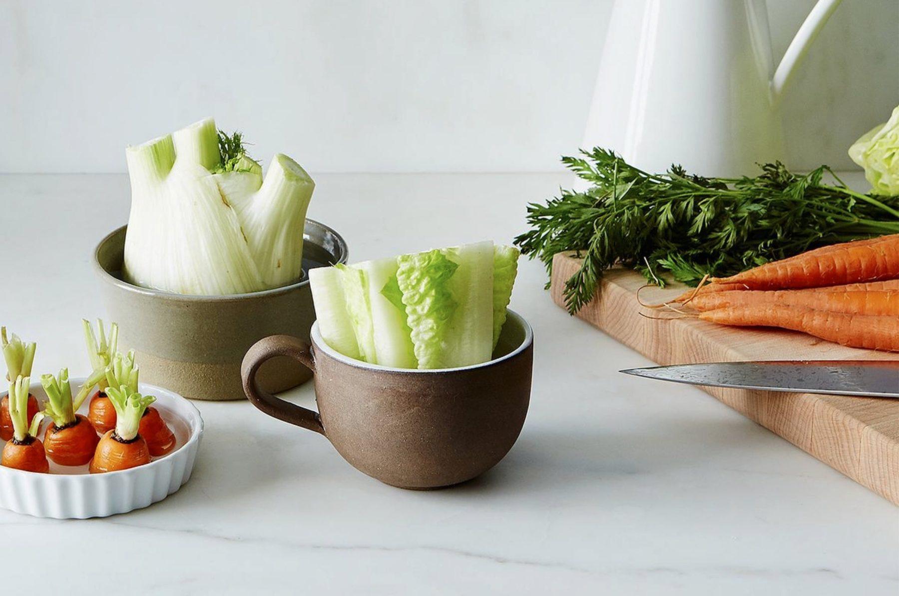 Je fais repousser mes légumes à l'infini