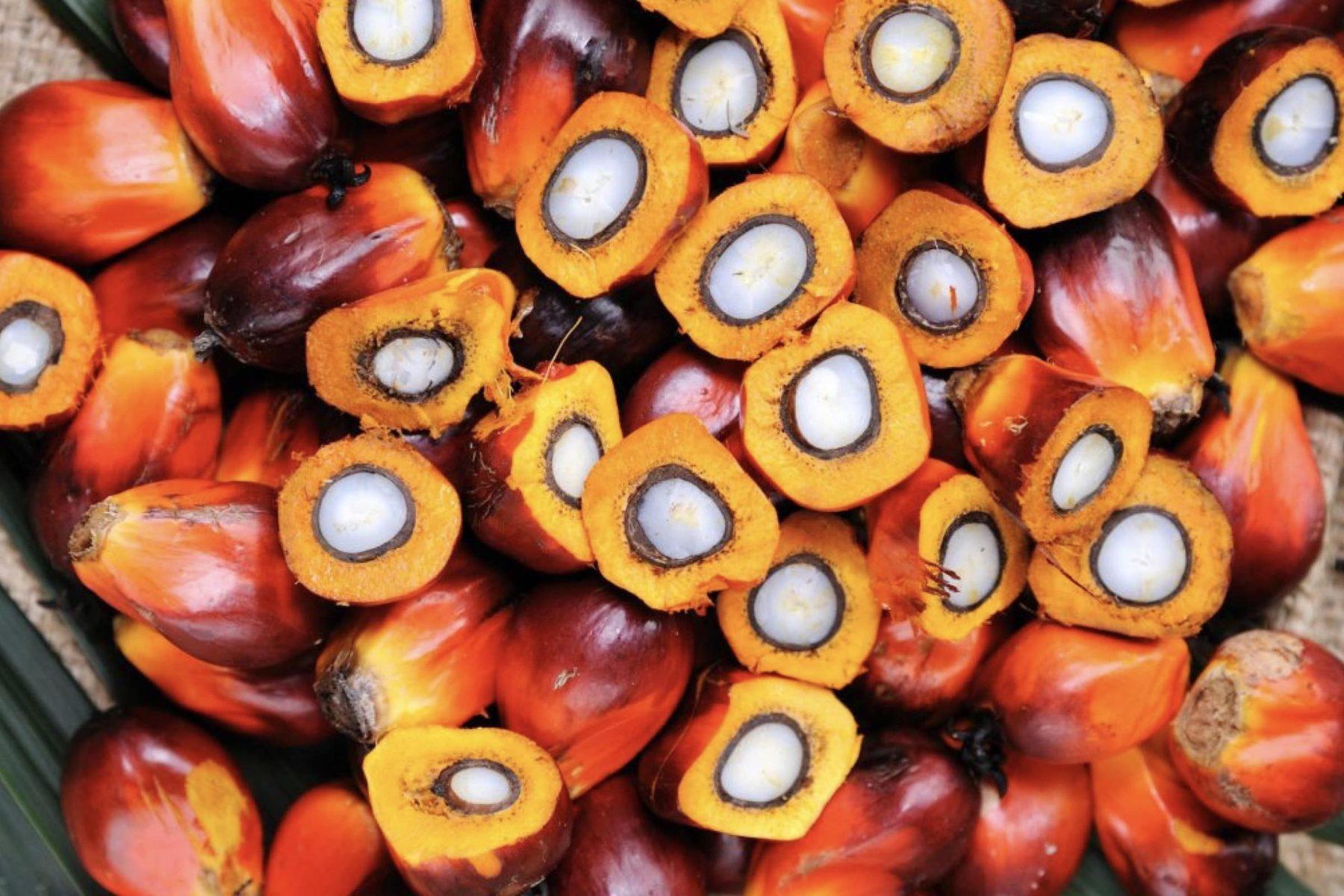 Je boycotte l'huile de palme