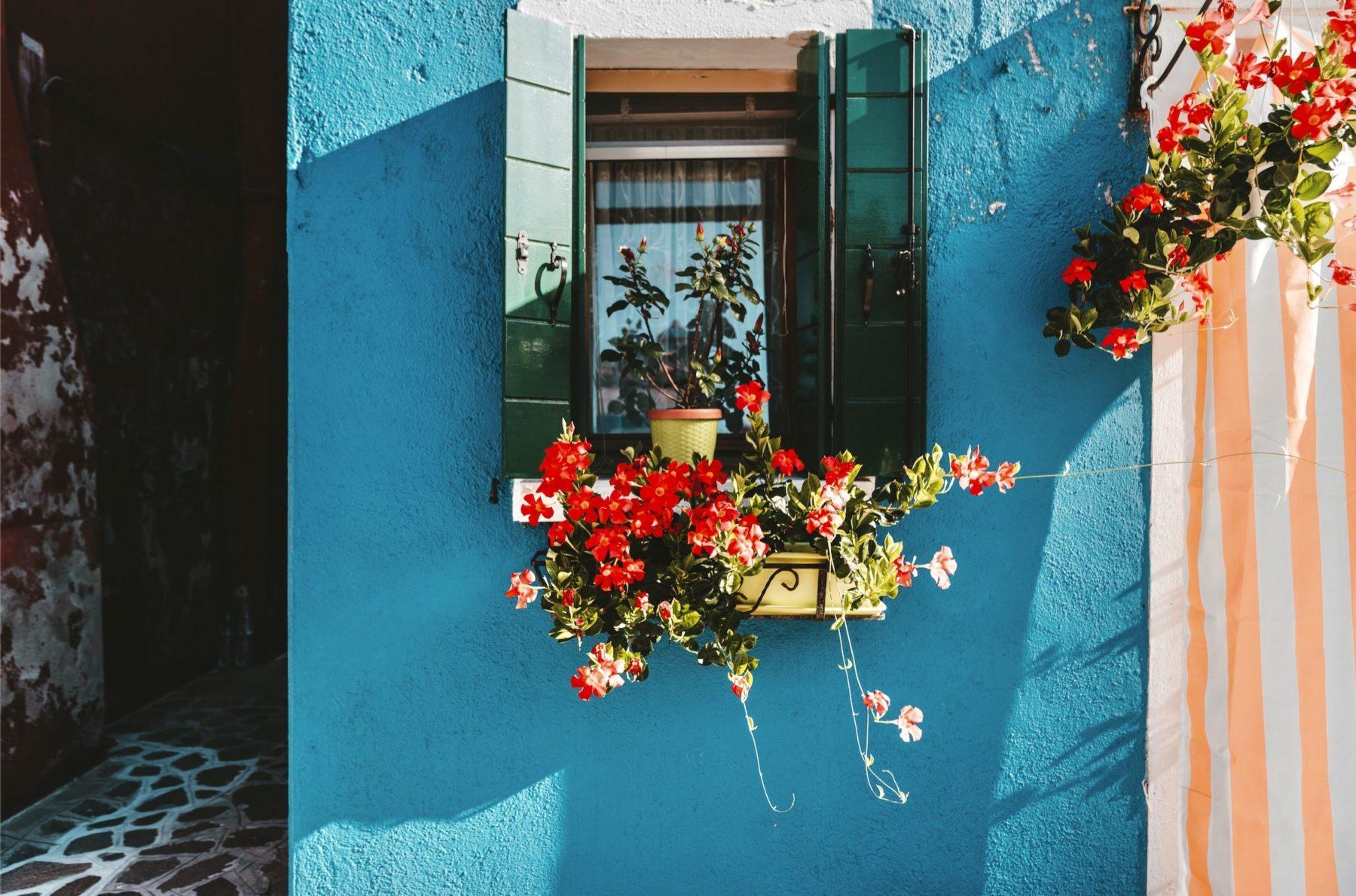 Je végétalise mon balcon ou mes rebords de fenêtres