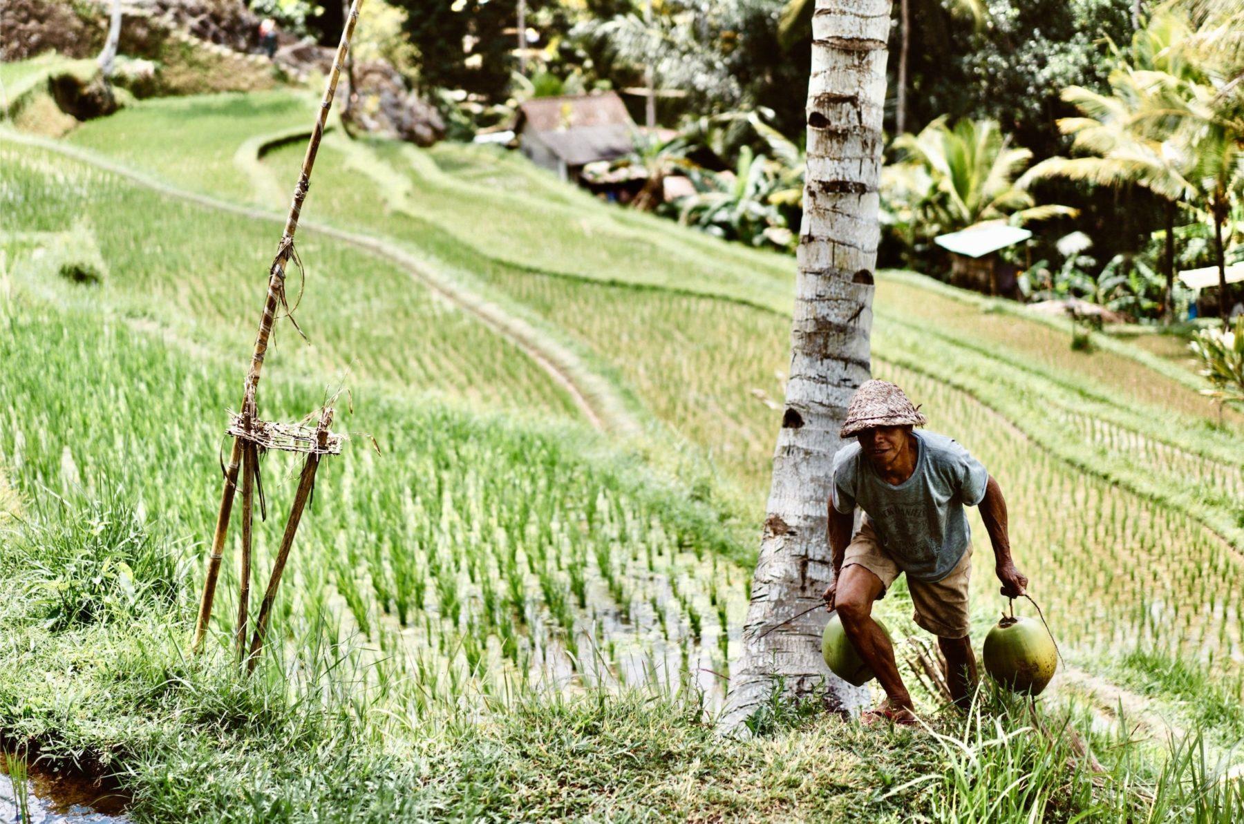 Je voyage à la rencontre des paysans du monde