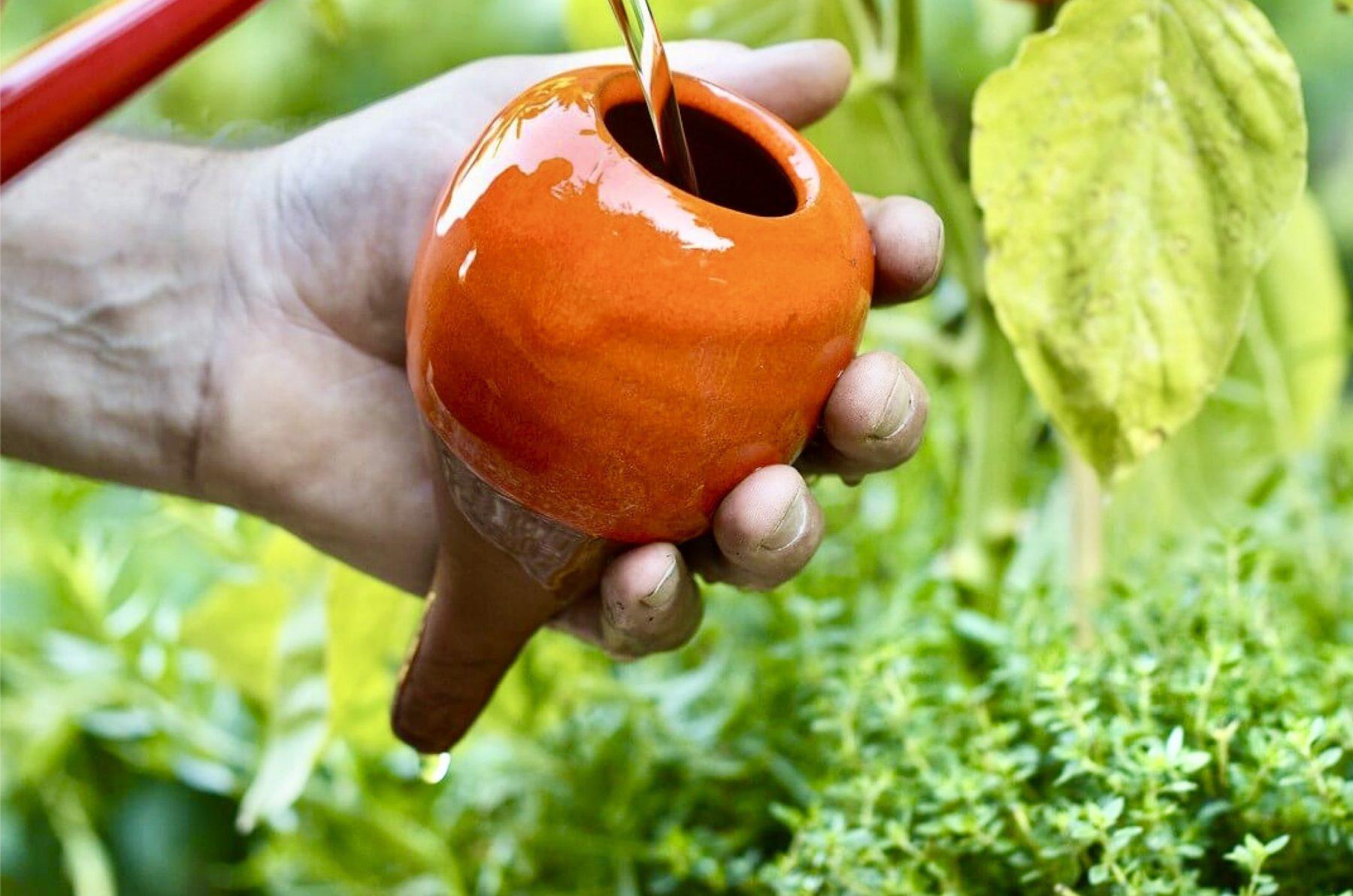 J'arrose mes plantes avec des Oyas