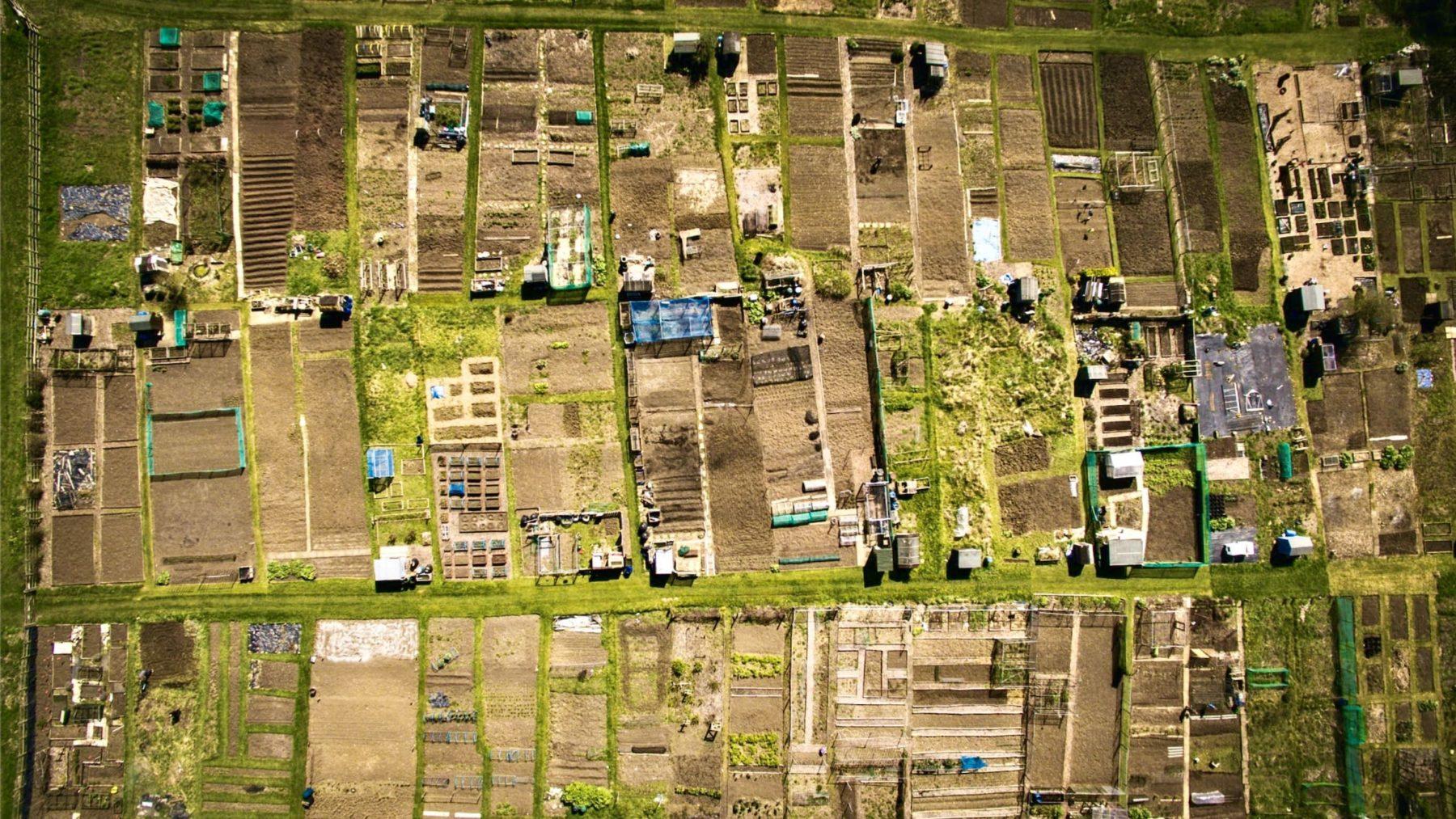 Les Jardins de la Victoire pour l'autonomie et la régénération du Vivant